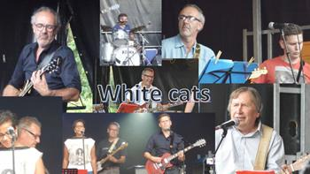 foto: 190426 Lokale Helden The White Cats B